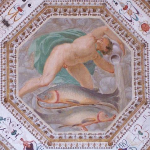 Aquarius palazzo chiericati ceiling